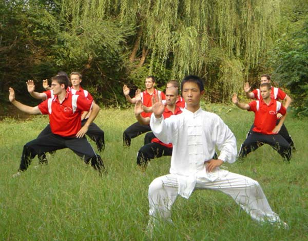 Typer af fitness: tai chi